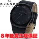 Scar gene SKAGEN watch men PERSPECTIV perspective SKW6043