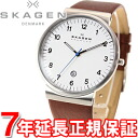Scar gene SKAGEN watch men SKW6082