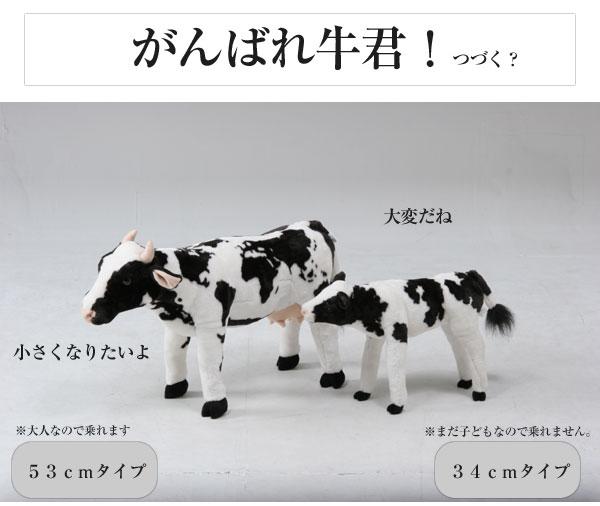 即时交货毛绒的动物玩具公仔凳牛 (牛儿) 动物可以骑从有趣 !