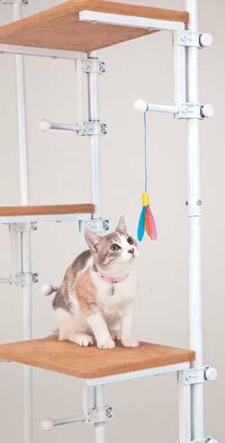 遊び心満載!猫タワー!