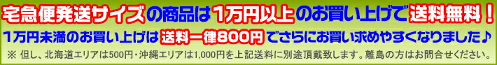 宅急便発送サイズなら1万円以上で送料無料!