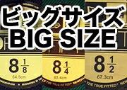 ビッグサイズ