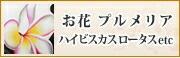 バリ絵画/花