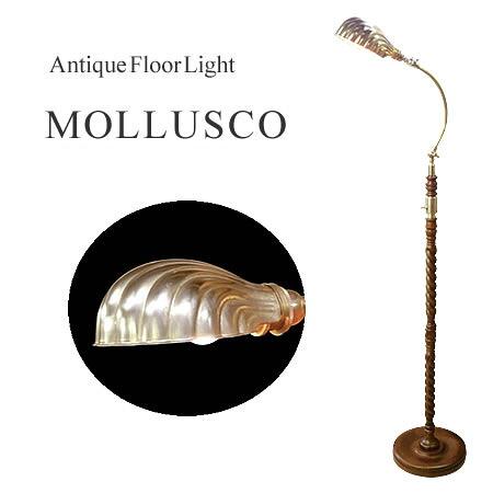 フロアライト MOLLUSCO モラスコ
