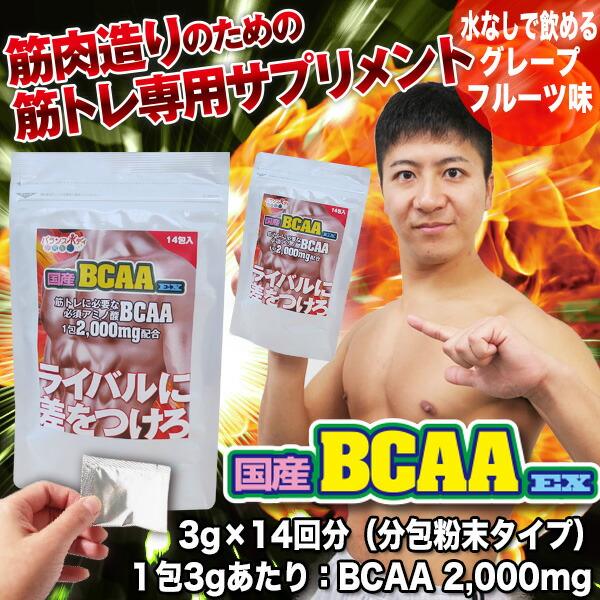 国産BCAA EX
