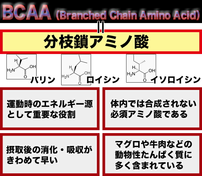 BCAA=分枝鎖アミノ酸。運動時のエネルギー源として重要な役割