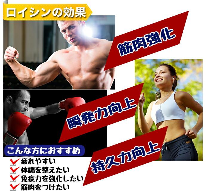 ロイシンの効果「筋肉強化・瞬発力向上・持久力向上」