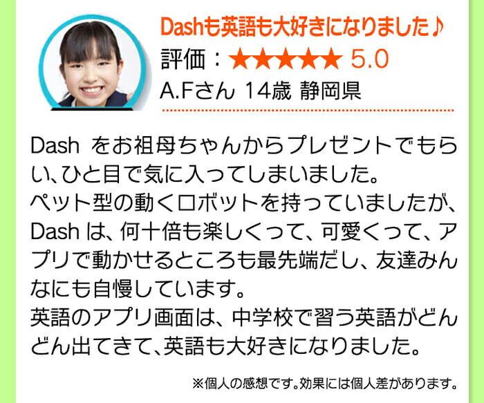 Dash ユーザーレビュー