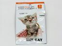 ★ vitalina glasses anti-fog sheet ★ soft 99 CAT