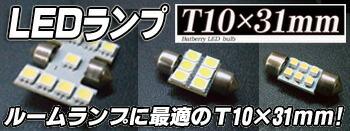 T10×31mm