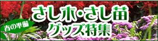 〜春の準備〜 さし木・さし苗グッズ特集