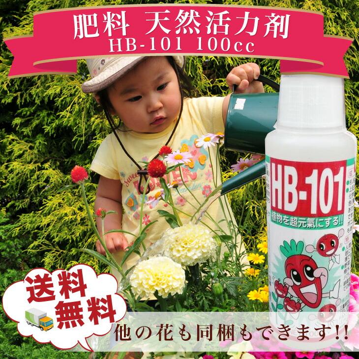 HB101������