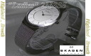 For women: SKAGEN 233-SSS women's