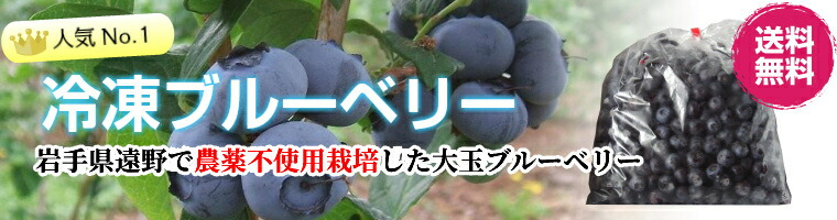 無農薬栽培の冷凍ブルーベリー