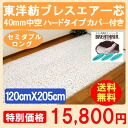 Back pain paving pad Oriental Toyobo sleep toy mattress Brescia core mesh cover with 120 cm x 205 cm made in Japan Japanese washable futon Oriental spinning Brescia core hard 40 mm hollow for semi