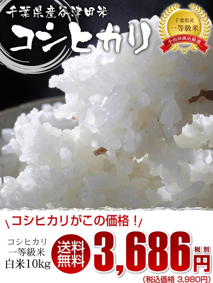 千葉県産のお米コシヒカリ精米10kg一等米