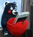 곰 몽 スマホポケット 헤매고 수납 케이스 곰 걸 장난감 곰 몬 스타 KM07