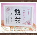 The first to Hinamatsuri name plates naming book girl dolls celebrate the name named book put store sales on the seventh day birth celebration