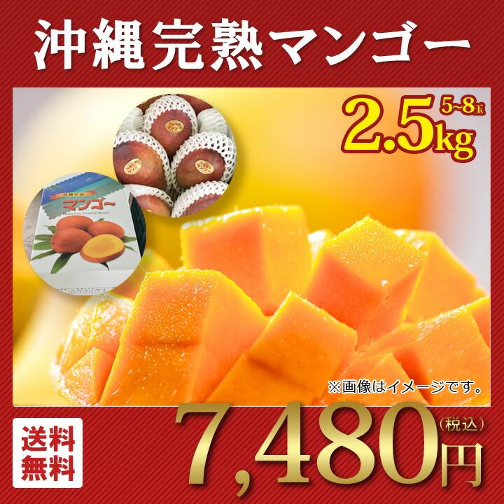 沖縄県産 マンゴー 産地直送 ギフトセット 秀品 5~8玉 2.5kg