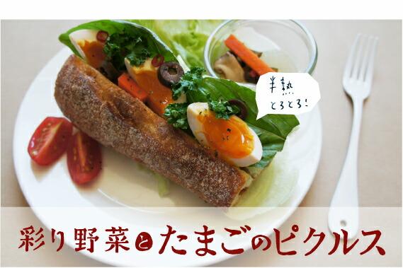 「たまごの絵」彩り野菜とたまごのピクルス