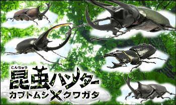 昆虫ハンター カブトムシ&クワガタ 2016 日本vs世界 森の戦士、集結