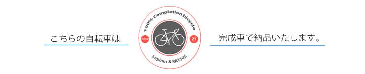 送料無料 100%完成車 自転車