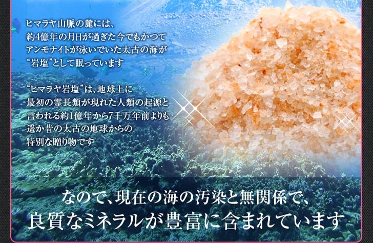 なので現在の海の汚染と無関係