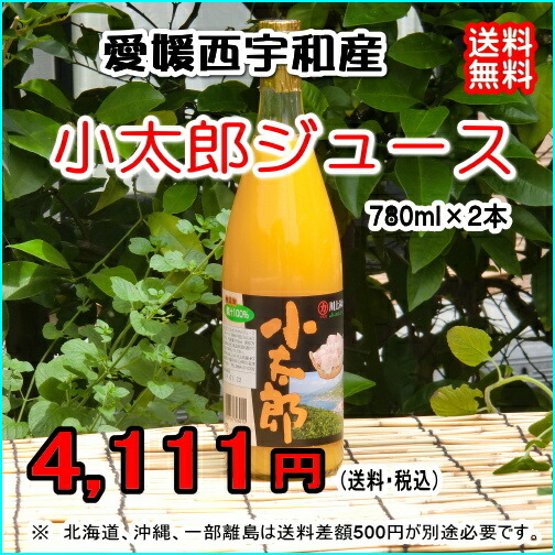 愛媛 西宇和産 越冬有袋みかん『小太郎ジュース(780ml×2本) 』