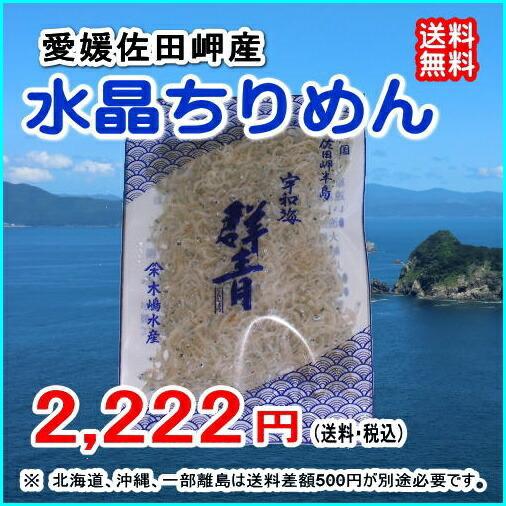 愛媛 佐田岬産 『 水晶ちりめん ミニ10パック  』  【送料無料】