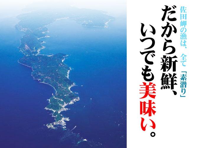 愛媛佐田岬産 天然 『 活き サザエ 1kg 』 【送料無料】佐田岬海士の贈り物