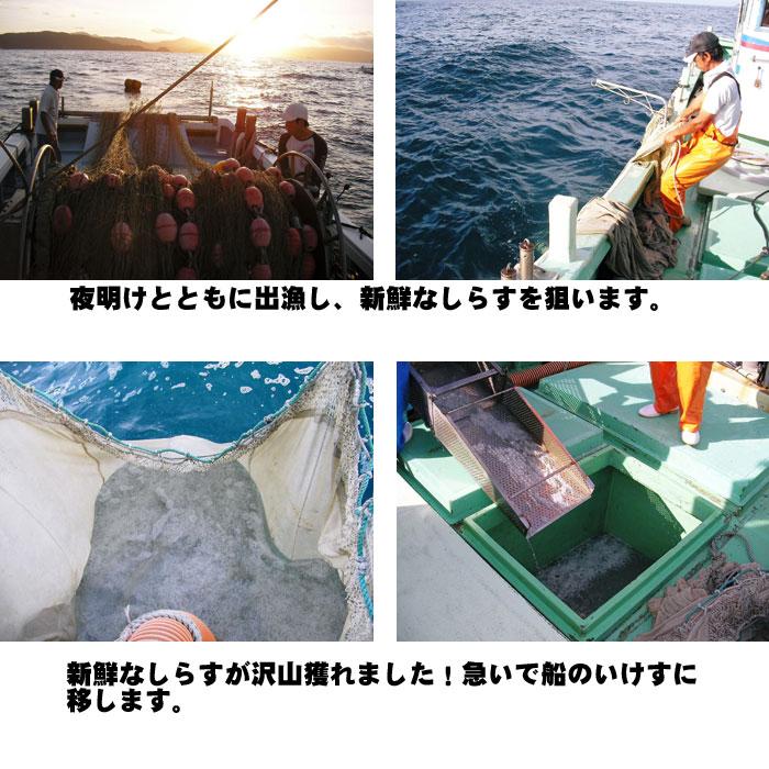 ★送料無料★【 釜揚げしらす 】〜産地直送〜佐田岬漁師の贈り物
