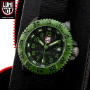 In the 3040 SERIES watch LUMINOX, LUMINOX Luminox 3041 OD military most military-designed with this coloring, belts, LLT, a new full scale military models