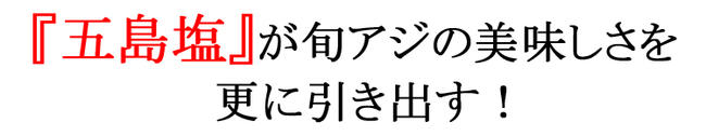 干物 アジ あじ 鯵 旬アジ