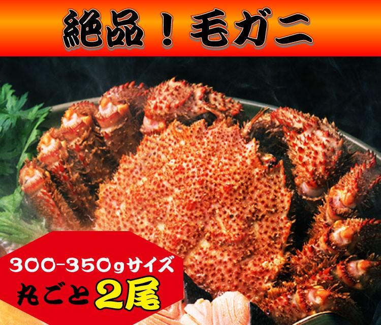 1,100%九州長崎産