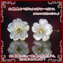 White shells & Peridot Flower Earrings