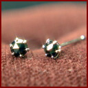 Only 10 points! PT プラチナローズカット black diamond 0.3 ct Stud Earrings