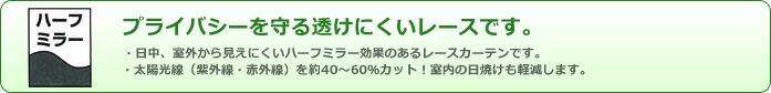 洗える!デザインレースカーテン DISNEYシリーズ(S)