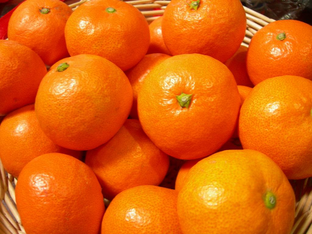 http://image.rakuten.co.jp/awajitamanegi/cabinet/img55404373.jpg