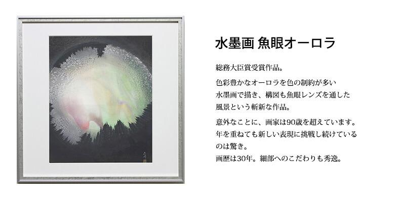 水彩画 魚眼オーロラ 総務大臣賞受賞作品