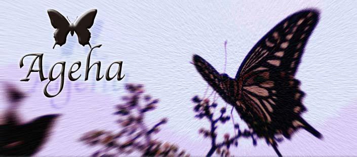 Ageha(アゲハ) シルバーアクセサリー