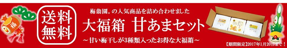 【送料無料】大福箱 甘あまセット