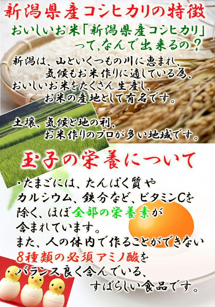 玉子がゆ250g (たいまつ食品)