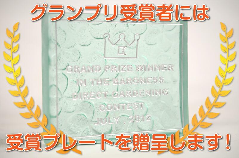 グランプリ受賞者には受賞プレートを贈呈します!
