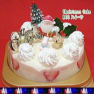 大阪ヨーグルトケーキのクリスマスケーキ5号