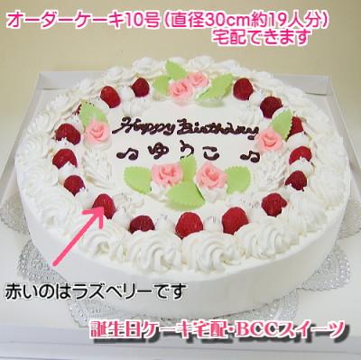 大型パーティーケーキ