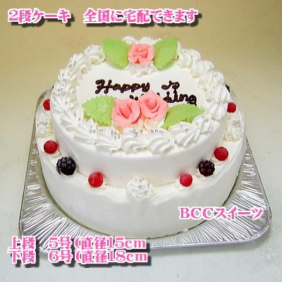 誕生日2段ケーキ
