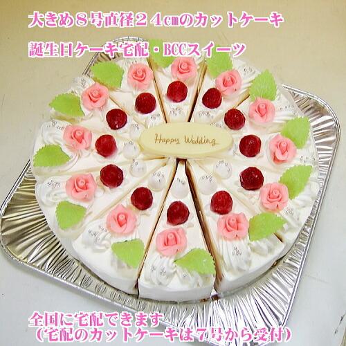大きいバースデーケーキ・大きいカットケーキ