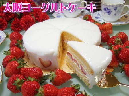 大阪ヨーグルトケーキケーキ