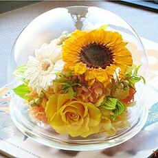 サンフラワーガラスドーム