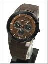 ( Skagen ) in SKAGEN men's watch multimedia calendar leather belt-Brown dial 50% off SKAGEN ( Skagen ) 856 XLDRD